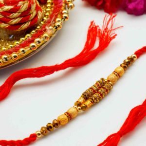 Rakhi festival in new york