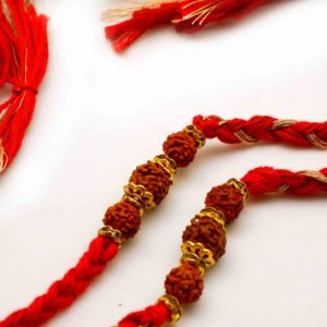 Buy online Rakhi in USA
