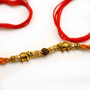 Buy rakhi in chicago