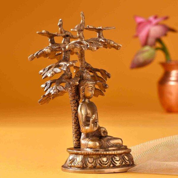 Grace of Buddha